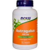 Astragalus 500mg 100kaps Now